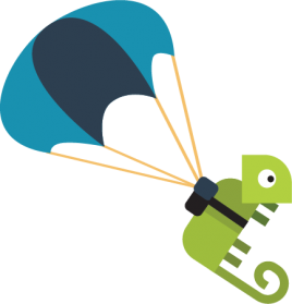 Turtle with Parachute