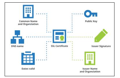 anatamy of digital certificate